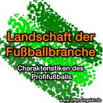Landschaft der Fußballbranche - Charakteristiken des Profifußballs