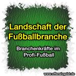 Landschaft der Fußballbranche - Branchenkräfte im Profifußball- Branchenkräfte im Profifußball