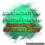 Landschaft der Fußballbranche - Sponsoring im deutschen Fußball