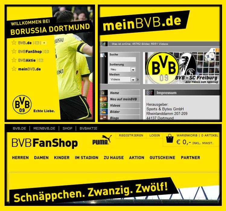14 - Online Kanäle BVB