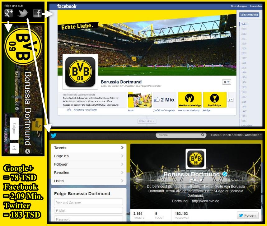 15 - Übersicht Social Media BVB